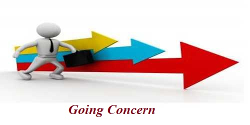 Factors that causes Substantial Doubt about Going Concern of company