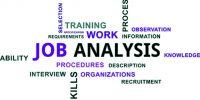 Features of Job Analysis