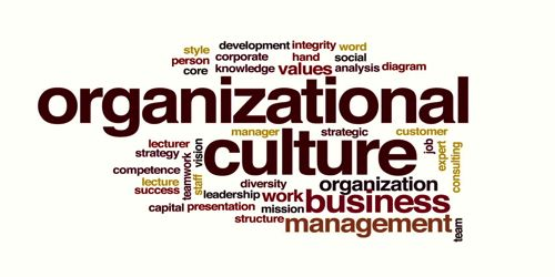 Organizational Culture and its components