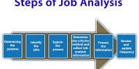 Steps of Job Analysis
