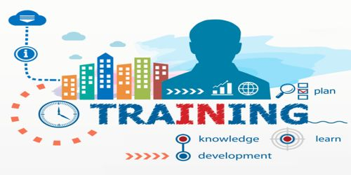 Does training play any role in Employee Performance?