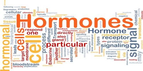 Physiological Properties of Hormone