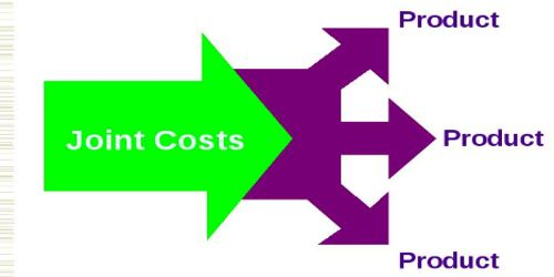 Joint Product and Joint Cost