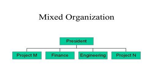 Mixed Organization Project (Hybrid)