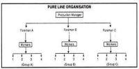 Pure Organizational System of Project Organization