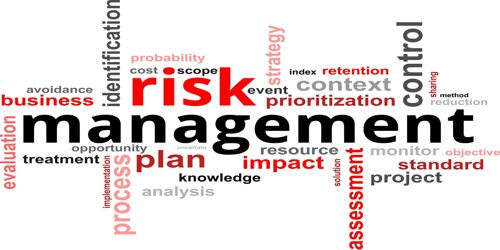 Risk Management application in Projects