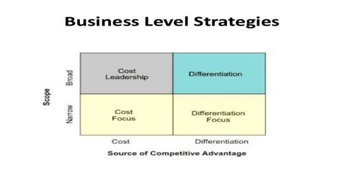 Various Business Level Strategies