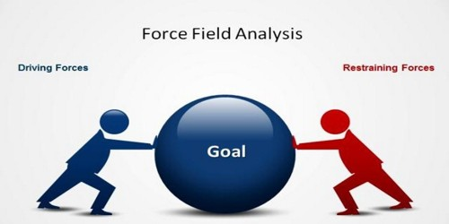 Relationship between Driving Forces and Strategy