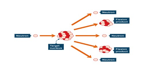 Nuclear Fission in Nuclear Physics