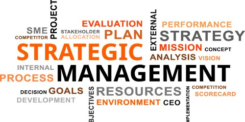 What are the various processes of crafting strategy?