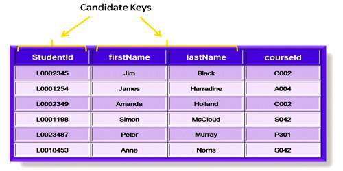 Candidate Key