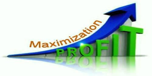 Criticism of Profit Maximization