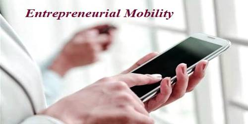 What factors do influence the Entrepreneurial Mobility?