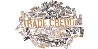 Credit Policy Variable