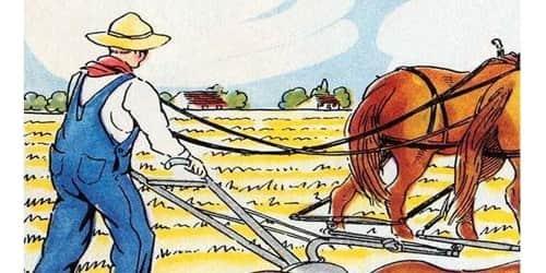 A Farmer