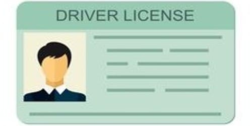 Application for Issuance Duplicate Driving License