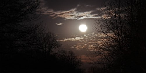 A Moonlit Night