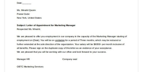 Job Offer Letter for Sales Executive