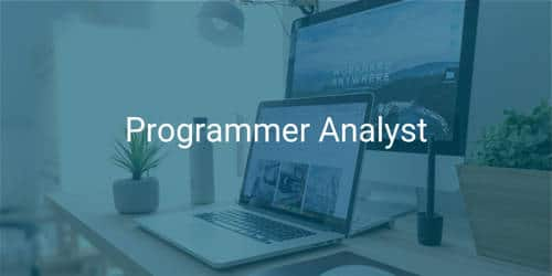 Cover Letter for Analyst Programmer