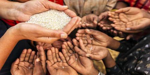 Food Problem in Bangladesh