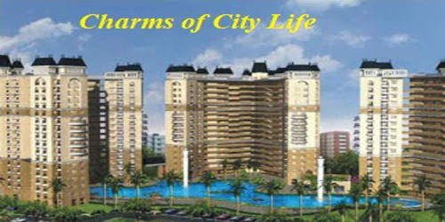 The Charms of City Life