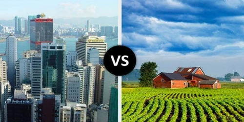 Pros and Cons of Country Life and City Life