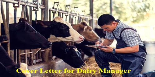 Cover Letter for Dairy Manager
