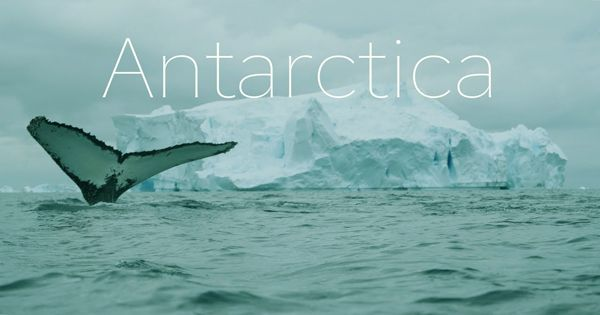 The greater humanitarian impact of Antarctica is more thought-provoking than ever