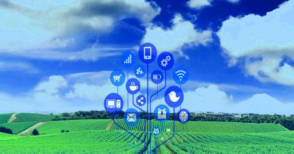 Satellite Crop Monitoring System for Efficient Farming