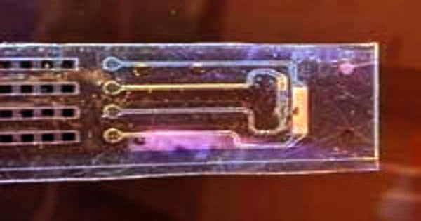 Bioelectronics device achieves control of cell membrane voltage