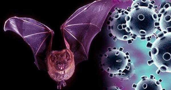 Nob 77 Nobel laureates condemn cancellation of BAT coronavirus research grant