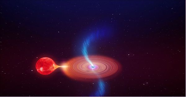 Repetitive gravitational waves can reveal the size of merged black holes