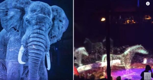 The German circus is using holographic animals instead of real ones