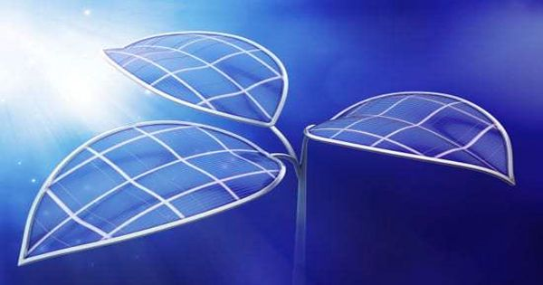 "This ""artificial leaf"" uses sunlight to pump renewable fuel"