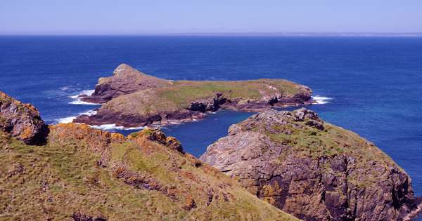 The huge remote island has become one of the largest wildlife sanctuaries in the world