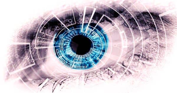 Brain implants successfully restore rudimentary vision in the blind