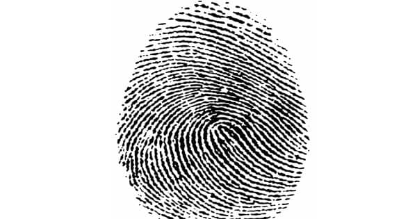Human fingerprints have a self-regulating moisture mechanism
