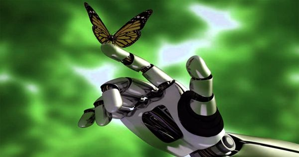 Study explores Nervous systems of insects enthuse competent future artificial intelligence systems