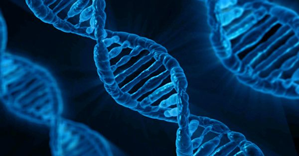 DNA and RNA Might Have evolved Together, Challenging Assumptions about the Origins of Life