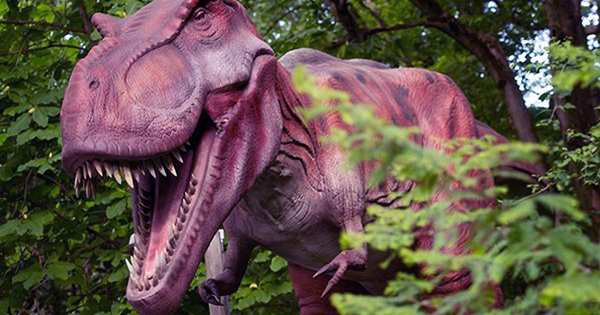 T. Rex had the urge to grow teenagers, but other dinosaurs were slow and steady