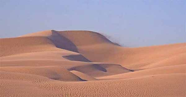 The Sand Dune Interactions Force Others to Keep Their Distance