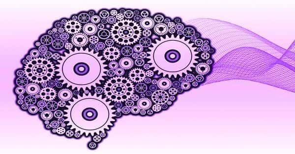 Researcher found Autistic person's nerve cells differ before birth
