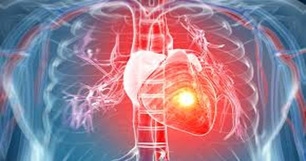 Harvard researchers explain – Cells can be revived after Heart Attacks