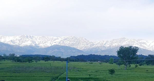 Himalayan Peaks Are Visible In Parts of India for the First Time in Decades Thanks To COVID Lockdown