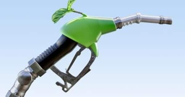 Researchers developed Advanced Light to Reveal Biofuels Behave