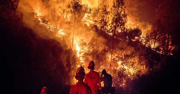The Huges Stretches of Siberia Are Currently On Fire