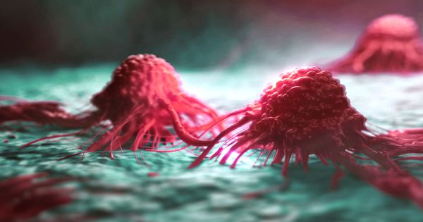 Thorough tumour profiling in cancer patients