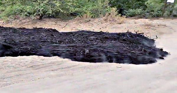 What The Hell Is This River Of Black Sludge Oozing Through Arizona?