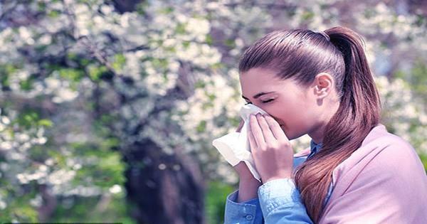Climate-Change-Is-Making-Allergy-Season-Last-Longer