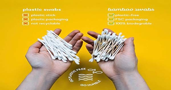 Cotton Swabs Are Hurting The Ocean. Use These Eco-Swabs Instead